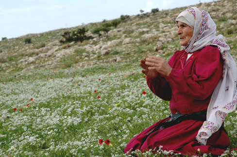 A Mother of Palestine