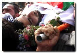 Israel kills 2 young Palestinians at checkpoints - Nov 7, 2013 (Click to go to the live blog)