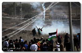 Intifada Youth Coalition protests at Gaza borders despite Israel's deadly assaults – Nov 1, 2013 (Click to see the full album)