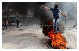 Clashes in Hebron after Resistance killed a soldier - Sept 22, 2013 (Click to see the full live blog and photos)