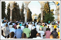 عيد الفطر | Eid ul-Fitr in Palestine - August 8, 2013 (Click to see the full album)