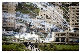 Israel violently suppresses demo at Ofer in support of #PalHunger - Febr 22, 2013 (Click to see the full album)