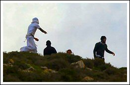 Israeli settlers attack Palestinian village of Qusra - Febr 23, 2013 (Click to see the full report, video and album)