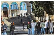Over a hundred Israeli forces and settlers defile Al-Aqsa Compound - Febr 7, 2013 (Click to see the report and full album)