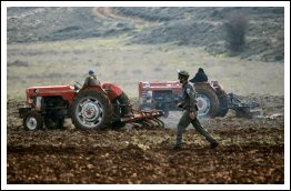 Settlers attack farmers in Jaloud - Jan 2, 2013 (Click to see the full album)