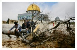 Aftermath of Storm & Rains in Palestine - Jan 7, 2013 (Click to read the report and see the full album)
