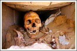 Mass graves from 1948 war discovered in Jaffa - May 29, 2013