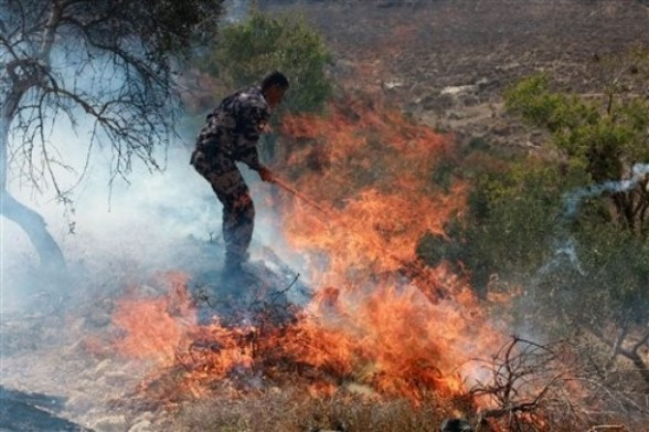 A Palestinian fire fighter tries to put out flames in a field, after arsonists torched an olive grove in the West Bank village of Burin, near Nablus, Monday, Sept. 5, 2011. Palestinian witnesses say Jewish settlers set fire to an olive grove in a West Bank village Monday, after a mosque was torched allegedly by Jewish settlers in another West Bank village earlier. Both incidents occurred after the Israeli military razed three buildings in an unauthorized West Bank Jewish settlement outpost before dawn, and clashed with defiant settlers who reject a Supreme Court ruling ordering the enclave to be dismantled. (AP Photo/Nasser Ishtayeh)