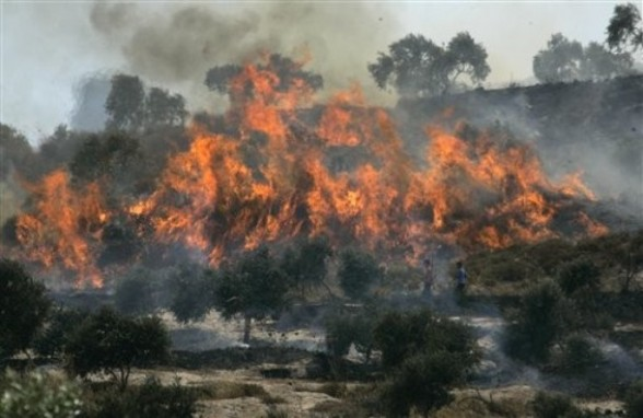 Palestinians walk past fires at an olive tree grove that they claimed was set ablaze by Israeli settlers, which could not be independently verified, in the northern West Bank village of Burin, near Nablus, Thursday, June 30, 2011. (AP Photo/Nasser Ishtayeh)