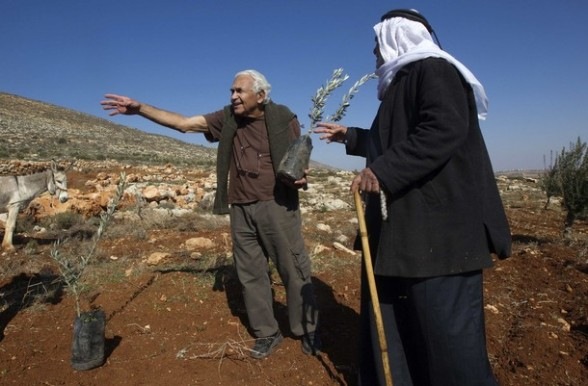 An Israeli left wing activist stands next to a Palestinian man before planting olive trees in an area that local Palestinians claim Jewish settlers uprooted olives trees last year in West Bank village of Mughaiyir, northwest of Ramallah January 20, 2011. Thursday marked Israel's Arbour day. REUTERS/Ronen Zvulun
