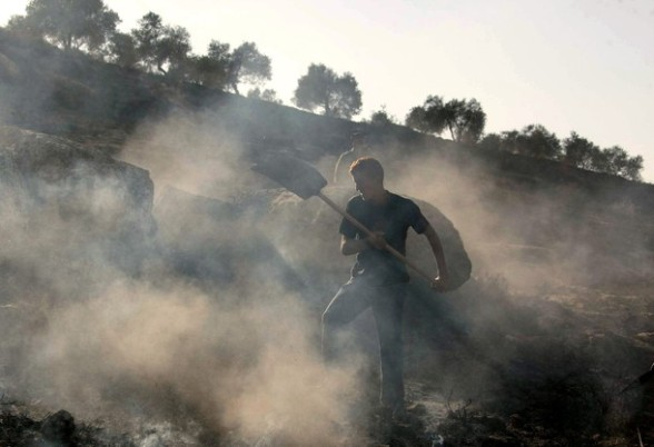 A Palestinian man extinguishes fire at an olive tree grove that was allegedly set ablaze by Jewish settlers in the northern West Bank village of Salem, east of Nablus, on November 14, 2010. AFP PHOTOJAAFAR ASHTIYEH (Photo credit should read JAAFAR ASHTIYEH/AFP/Getty Images)