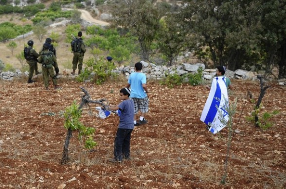 Children of Israeli settlers damage vines in a Palestinian orchard near Hebron during a rally which preceeded a funral on September 25, 2011 at the location where Israeli settler Asher Palmer, 25, and his one-year-old son, Yehonatan, were killed two days earlier when their car overturned near the Kiryat Arba settlement in the southern West Bank in a car accident allegedly caused by a stone thrower. AFP PHOTO/DAVID BUIMOVITCH