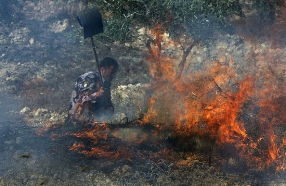 A Palestinian policeman uses a flap to put out a fire in an olive grove and field, which according to the local Palestinian villagers was started by settlers from a near by Jewish settlement close to the West Bank village of Burin on September 5, 2011, as tensions between  Palestinian living in towns and villages in the Israeli occupied West Bank and Jewish settlers living in settlement dotted around the West Bank remain high.  AFP PHOTO/JAAFAR ASHTIYEH