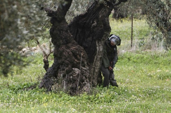 An Israeli border police officer takes position behind a tree trunk during clashes with Palestinian stone-throwers (unseen) at a weekly protest in the West Bank village of Nabi Saleh, near Ramallah March 16, 2012. REUTERS/Mohamad Torokman