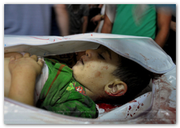 Gaza Under Attack - July 31, 2014  (Click to go to the album and liveblog)