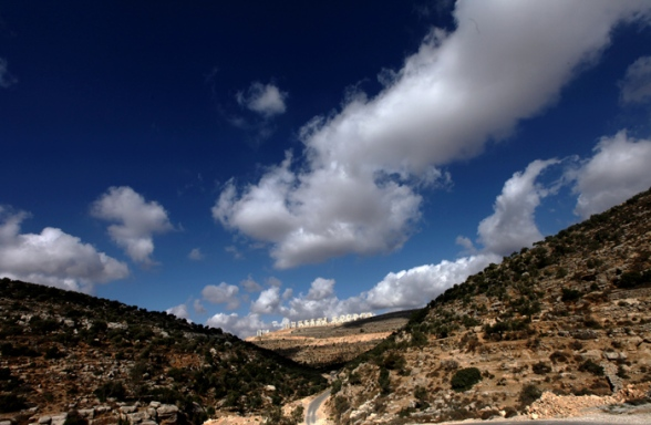 Scene of Ein Qinya valley with its olives trees & vineyards – Ramallah district - Oct 14, 2012 - Photo by Wafa.ps
