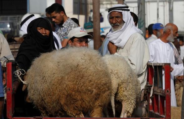 Oct 22, 2012   Gaza preparing for Eid al-Adha Photo: Hatem Moussa/WAFA