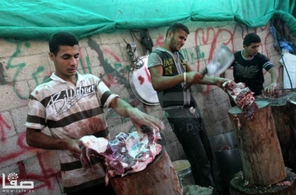 Oct 26, 2012 Gaza Eid al Adha Ritual slaughter  Photography by Safa.ps