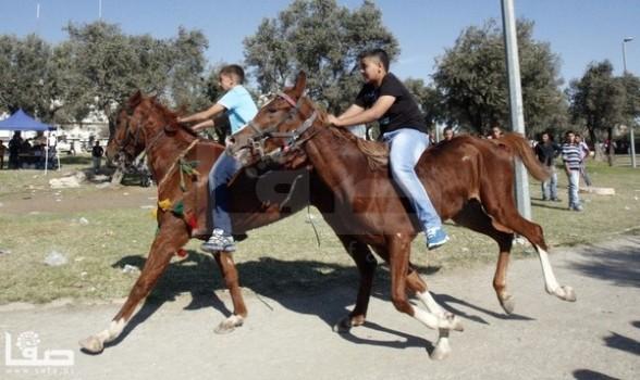 Gaza - Eid celebration atmosphere in tGaza Oct 28, 2012 - Photo by Safa.ps
