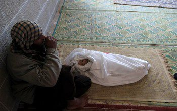 156652694