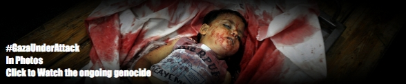 Follow the genocide in Gaza - In Photos and Video