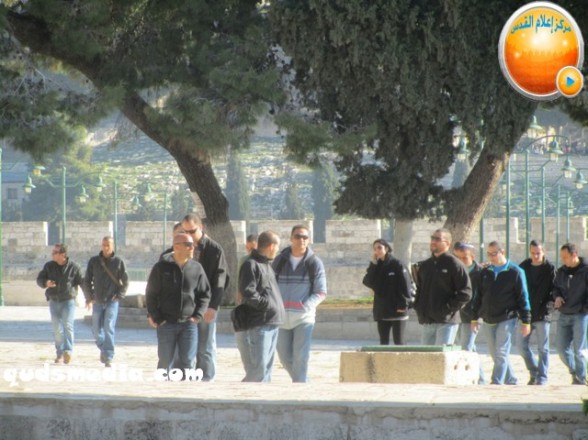 Al Aqsa invasion Dec 31 2012 Palestine - Photo by Quds Media