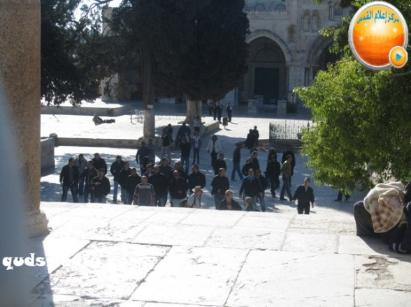 Al Aqsa invasion Dec 31 2012 Palestine 29