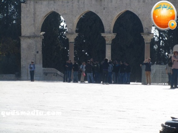 Al Aqsa invasion Dec 31 2012 Palestine 30