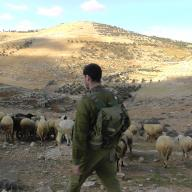 Dec 17 2012 Israel soldier chase away shephers and flocks 333408_10151134174171986_1372550240_o
