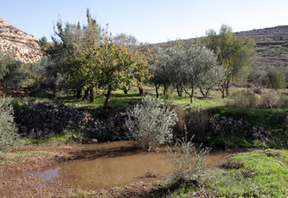 Dec 4 2012 Settlers dump wastewater illegal settlement (file photo)