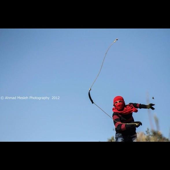 Photo by Ahmad A. Mesleh Nov 30, 2012