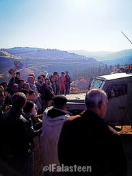 Jan 19, 2013 Photo by @iFalasteen