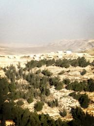 This was the view of #BabAlShams when we where getting attacked by Zionist occupation.