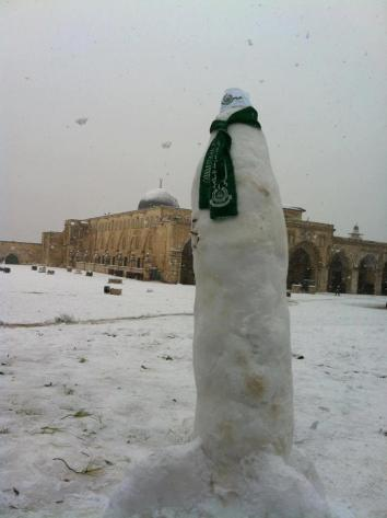Jan 10 2012 M75 in the snow in Palestine