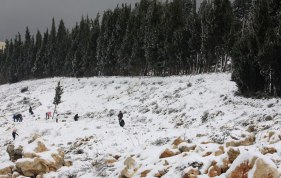 Jan 10 2013 Blanket of snow covers Nablus - Photo by WAFA