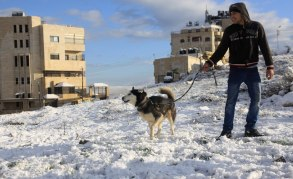 Jan 10 2013 Blanket of snow covers Nablus  - Photo by WAFA 9