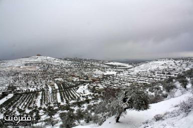 Jan 10 2013 - Qusra in the snow in Palestine - Photo by Qusra net 11