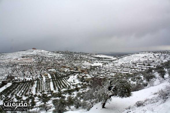 http://occupiedpalestine.files.wordpress.com/2013/01/jan-10-2013-qusra-in-the-snow-in-palestine-photo-by-qusra-net-11.jpg?w=588