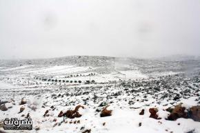Jan 10 2013 - Qusra in the snow in Palestine - Photo by Qusra net