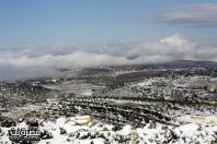 Jan 10 2013 - Qusra in the snow in Palestine - Photo by Qusra net 24