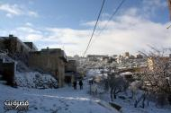 Jan 10 2013 - Qusra in the snow in Palestine - Photo by Qusra net 4