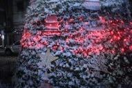 Jan 10 2013, Snow in Ramallah - Photo by WAFA