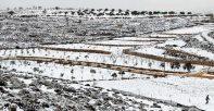 Jan 11 2013 Qusra