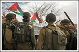 Jan 25, 2013 Activists hoist flag at illegal settlement (Click to go to the album)