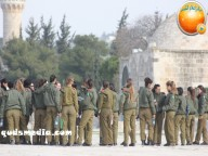 Jan 29 2013 Female Israeli Soldiers March through Aqsa Compound - Photo by QudsMedia 5