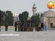 Jan 29 2013 Female Israeli Soldiers March through Aqsa Compound - Photo by QudsMedia 6