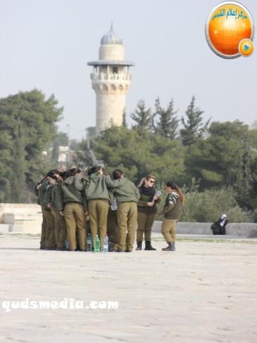 Jan 29 2013 Female Israeli Soldiers March through Aqsa Compound - Photo by QudsMedia 7