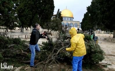 Jan 7 2013 Aftermath Storm West Bank Palestine 1