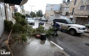 Jan 7 2013 Aftermath Storm West Bank Palestine 13