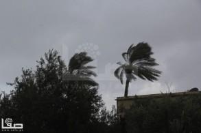 Jan 7 2013 Aftermath Storm West Bank Palestine 15